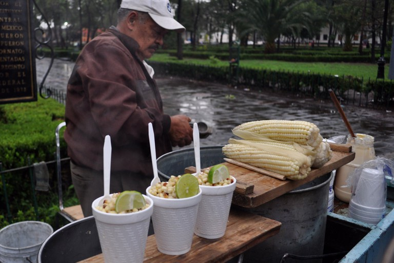 Elotes and esquites | © katiebordner/Flickr
