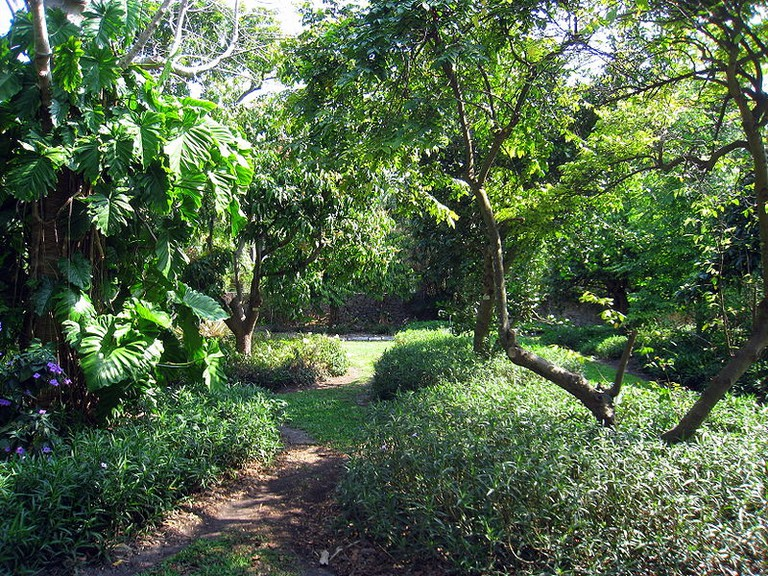 The Kampong Garden, Coconut Grove | Wikipedia Commons