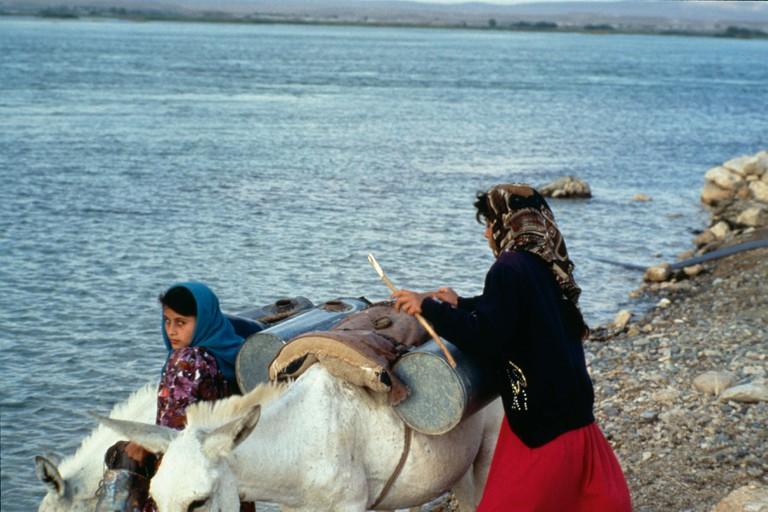 Abu Daama 1998
