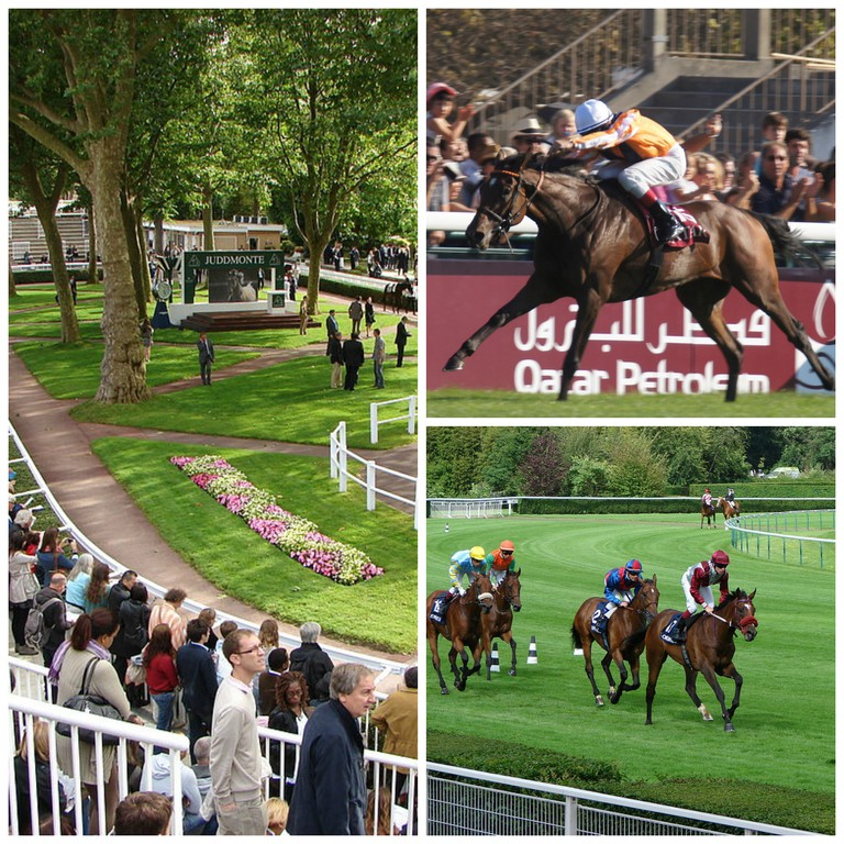 Presentation round at Longchamp Racecourse © Copyleft/WikiCommons │ Danedream winning the Arc de Triomphe 2011 © Charles Roffey/Flickr │ After the race in 2012 © Copyleft/WikiCommons