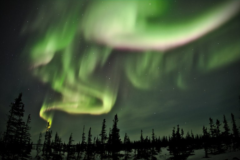 Northern lights dancing in a clear sky, near the Churchill Northern Studies Center | Emmanuel Milou/Flickr