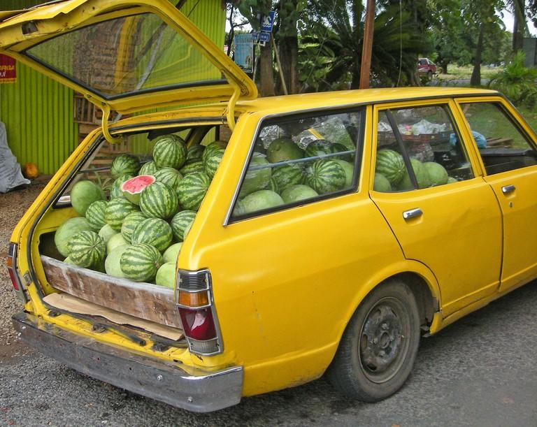 too much watermelon