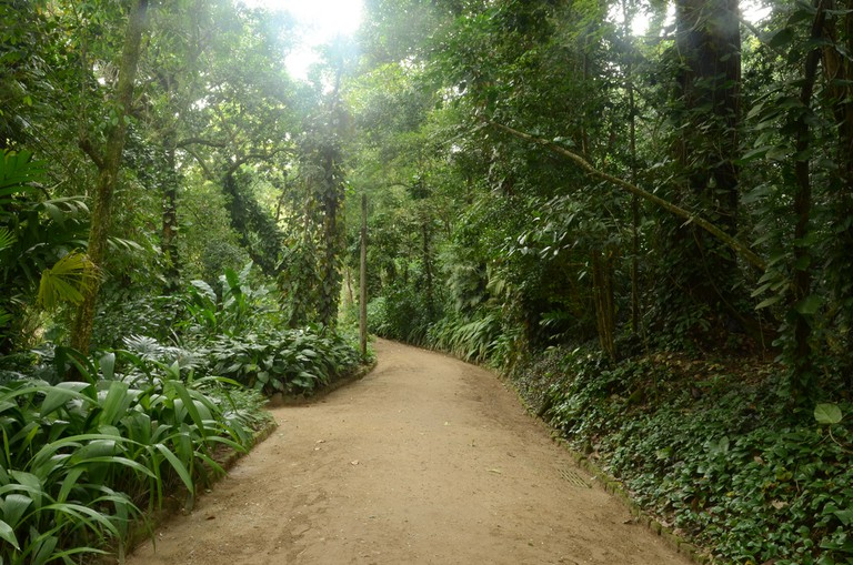 A path in the garden through the thick vegetation |© Rodrigo Soldon/Flickr
