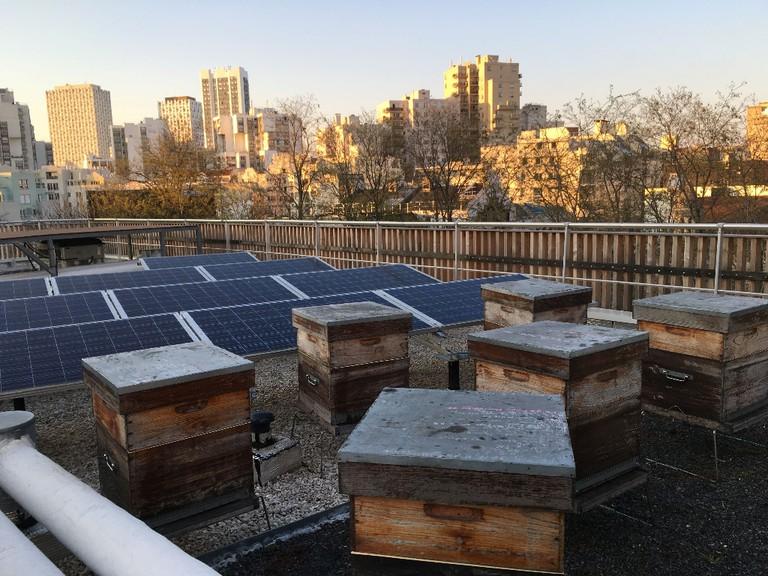 Hives on a roof at rue des Maraichers in the 20th arrondissement of Paris │ Courtesy of Un apiculteur près de chez vous