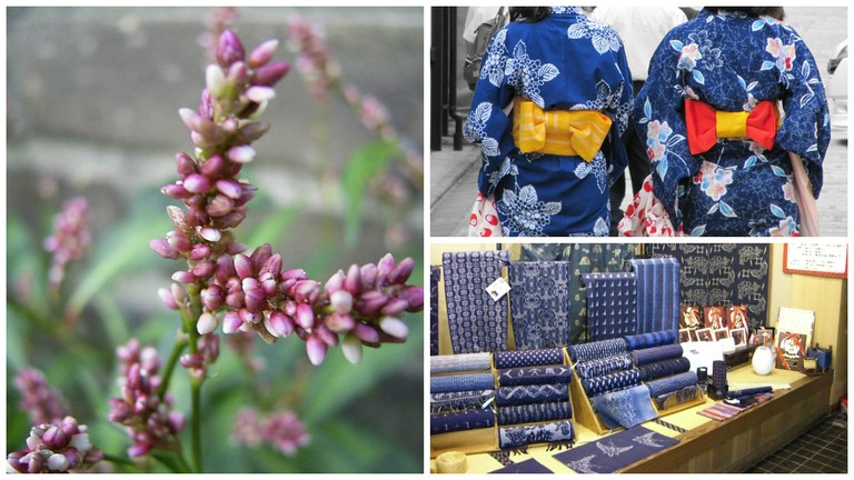 A type of polygonum, where indigo dye can be extracted | © TeunSpanns/WikiCommons / Women in indigo yukata out for a stroll | © Lorean a.k.a. Loretahur/Flickr / Ai-zome dyed kasuri (patterned) fabrics for sale | © Jyo81/WikiCommons