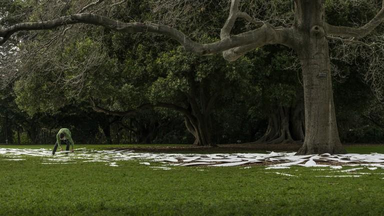 Jonathan Jones placing ceramic shields on site at the Royal Botanic Garden, Sydney.
