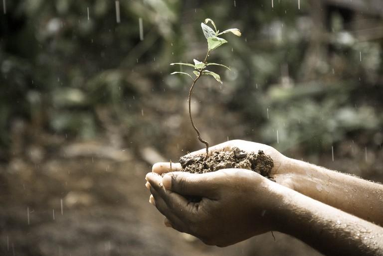 Praying for a rainy season on Shmini Atzeret