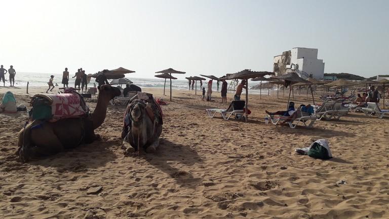 Arriving in Sidi Kaouki