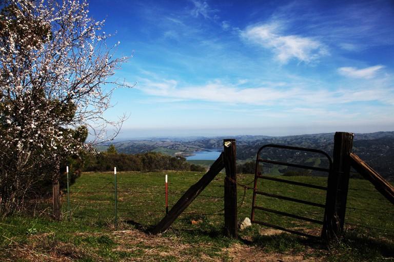 Tilden Park Hiking Trail © Sonny Abesamis/Flickr