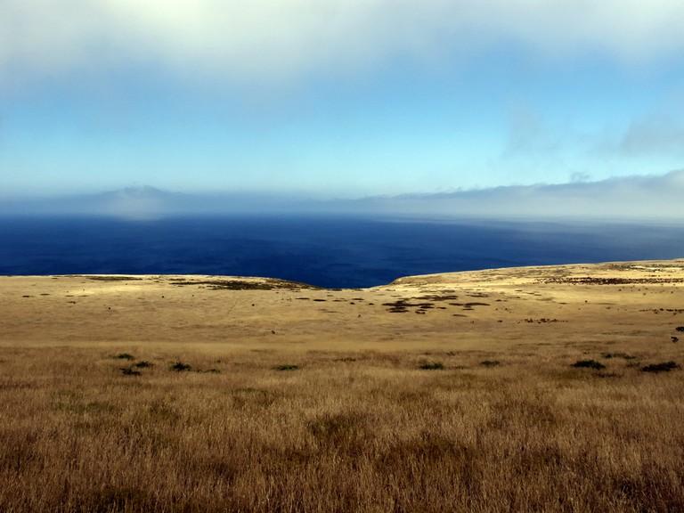 Santa Barbara Island | © John Fellner/Flickr