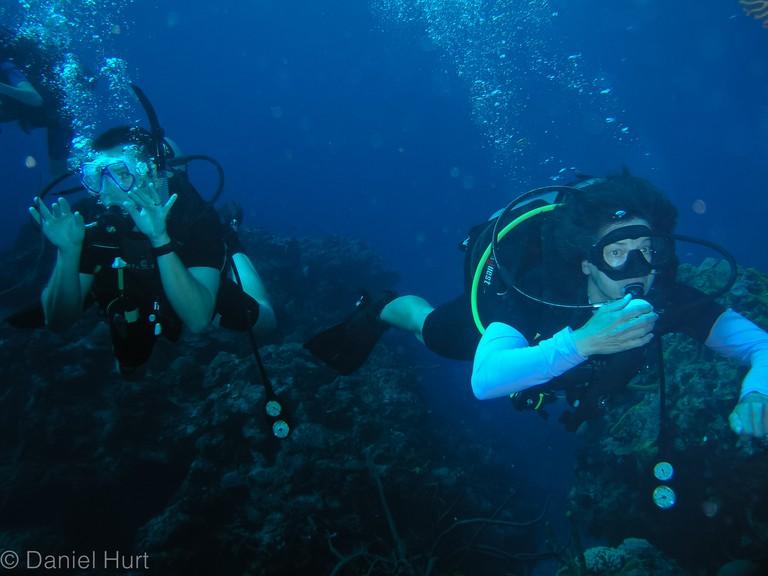 Scuba diving, Cozumel