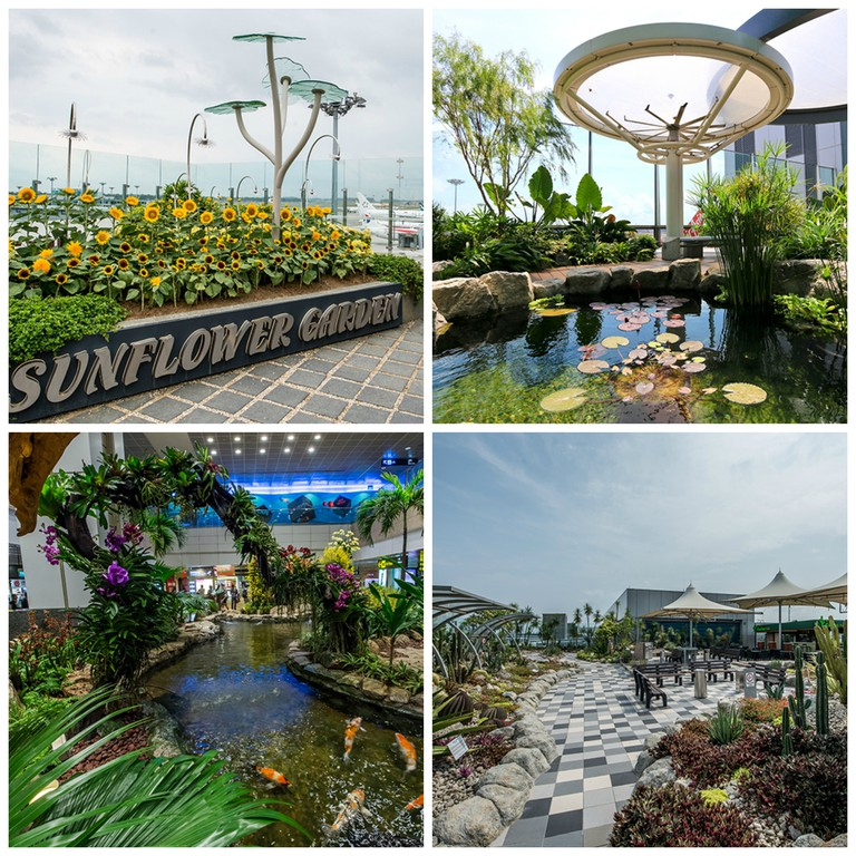 Terminal 2 Sunflower Garden | Terminal 1 Lily Pad Outdoor Deck | Terminal 2 Orchid Garden and Koi Pond | Terminal 1 Cactus Garden || All images Courtesy of Changi Airport