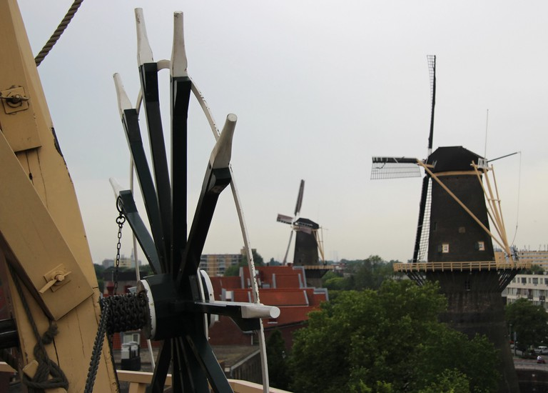 The view from de Nieuwe Palmboom windmill