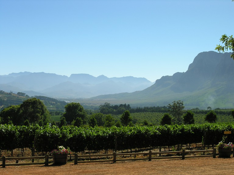 The Cape Winelands © Chris Eason/Flickr