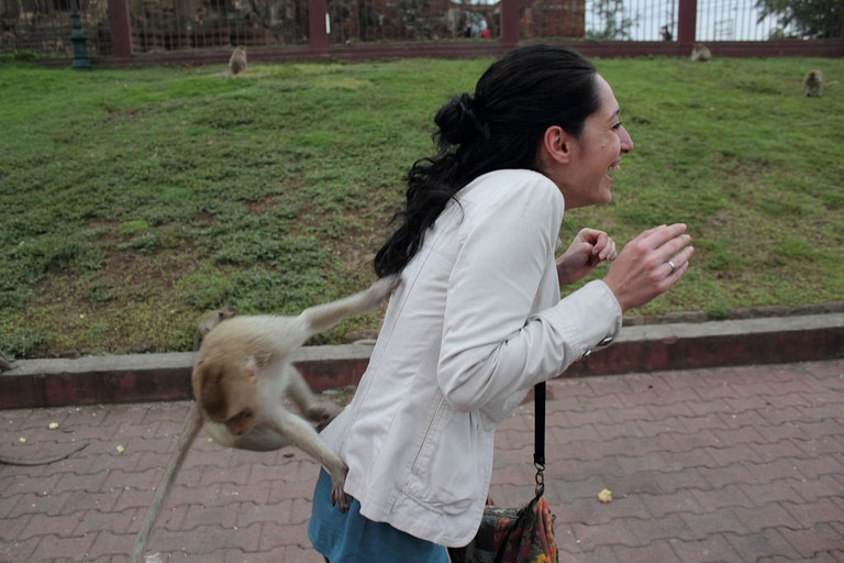 The Monkey Town (Lopburi)