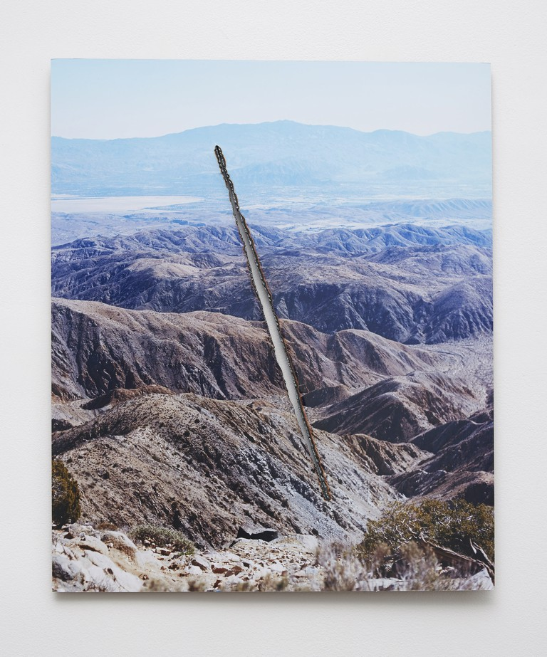 "Joshua Tree Steel Cut (Slash), 2015 C-print, steel 24"" x 20"" 