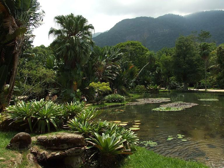 Botanical Gardens |© LubovGorshkova/WikiCommons