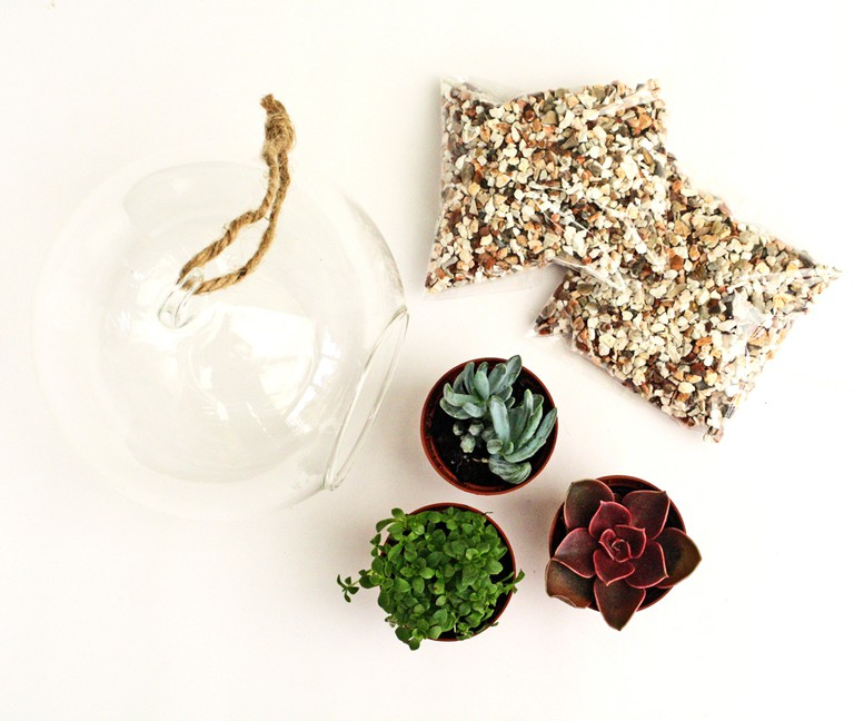 Terrarium Starter Kit, £19.99 from The Oak Room