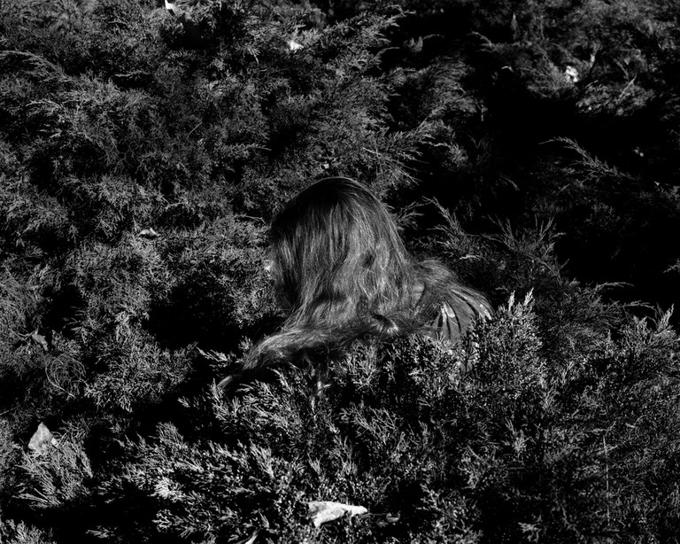 © Whitney Hubbs