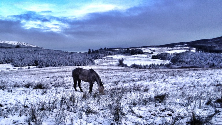 A snowy morning in County Tipperary | © Irish Fireside/Flickr