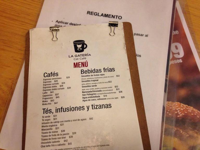 La Gatería | Courtesy of author