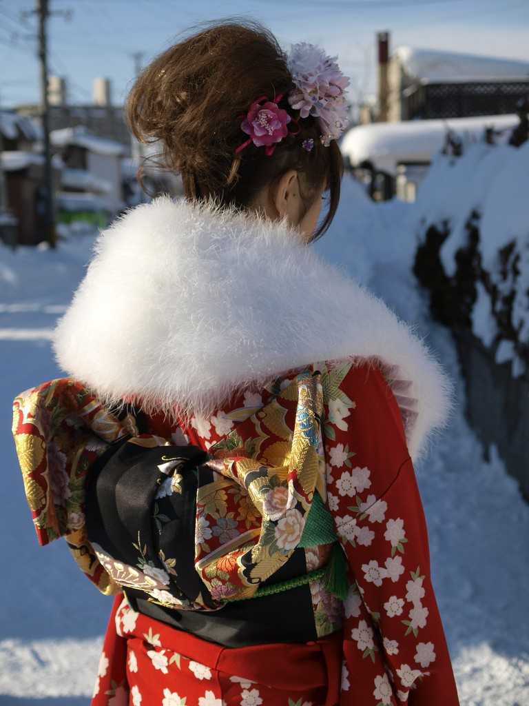 Fine furisode and obi with fur stole | © ふにゃん/Photozou (Funyan)