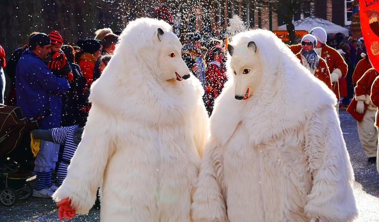 Bears | Pixabay/public domain