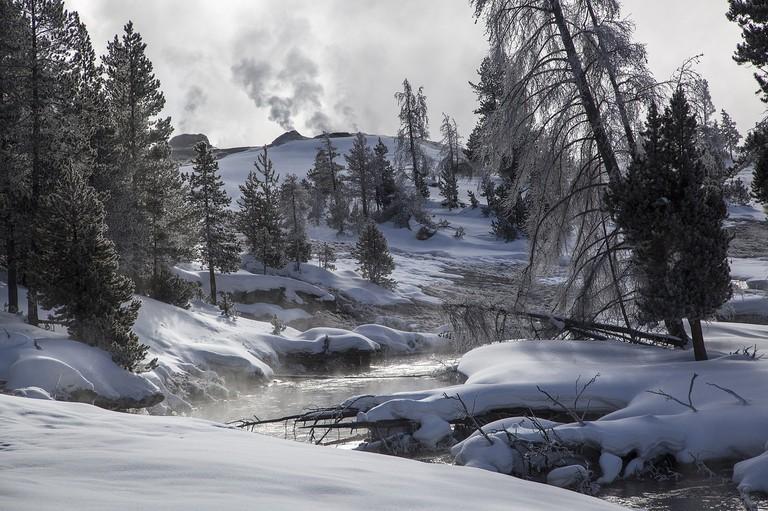 Yellowstone | Public Domain/Pixabay