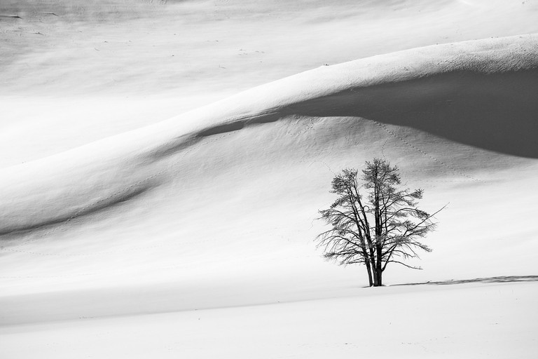 Snow Dunes, Yellowstone National Park | Public Domain/Pixabay