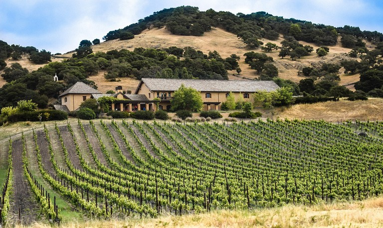 Vineyard, CA