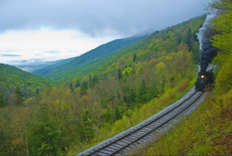 View from the Cass Scenic Railroad (WV), May 2013