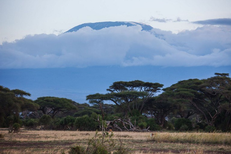 Amboseli National Park with a view of Mt. Kilimanjaro | © Ninara/ Flickr