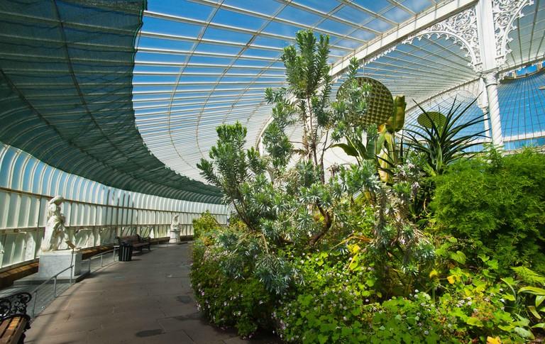 Botanic Gardens, Glasgow, Scotland.