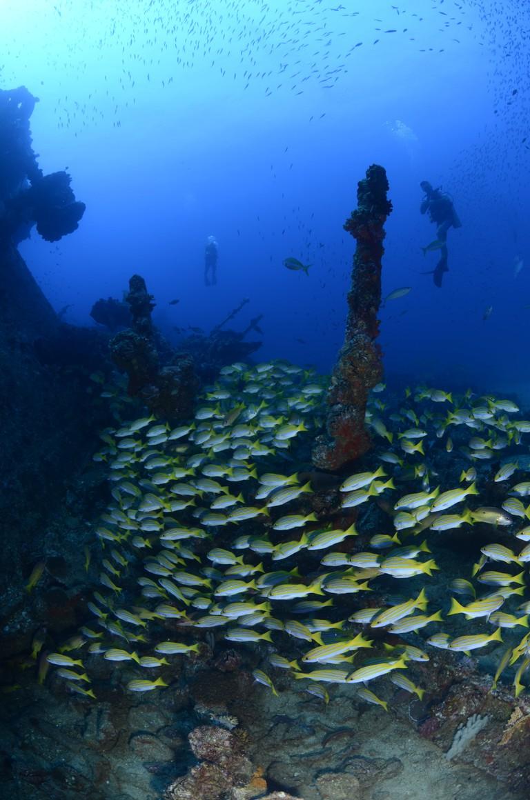Ennerdale Shipwreck, Mahe Seychelles. © image courtesy of Big Blue Divers