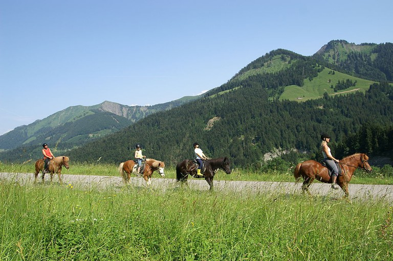 horse riding | ©böhringer friedrich / Wikimedia Commons