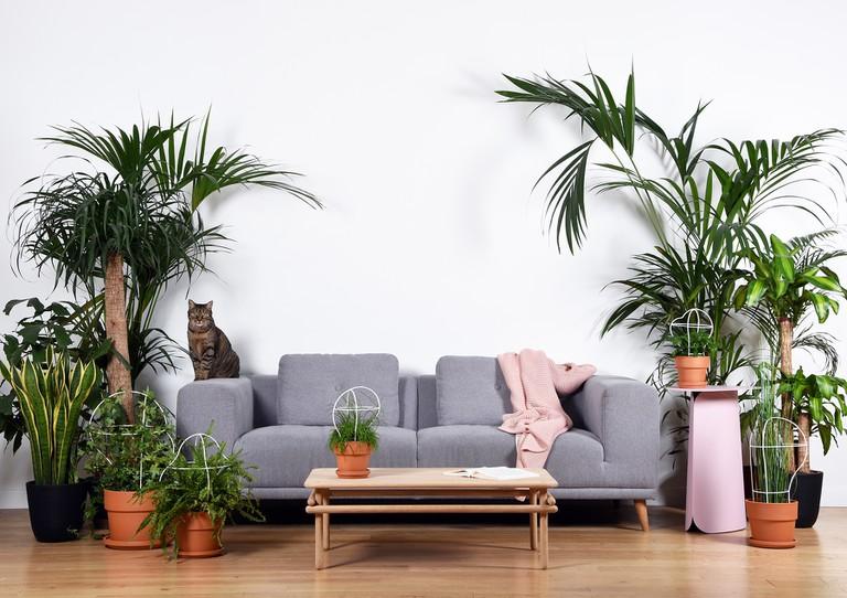 Living room │ Courtesy of Fleux'