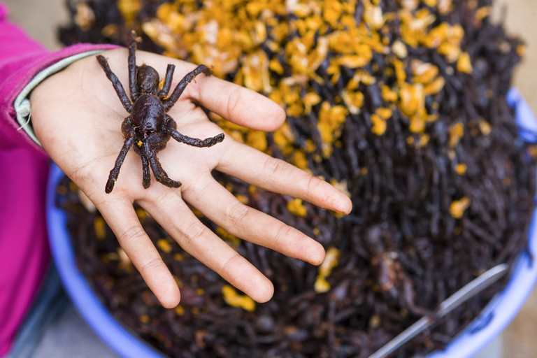 Deep-fried tarantulas are available as snacks in Cambodia