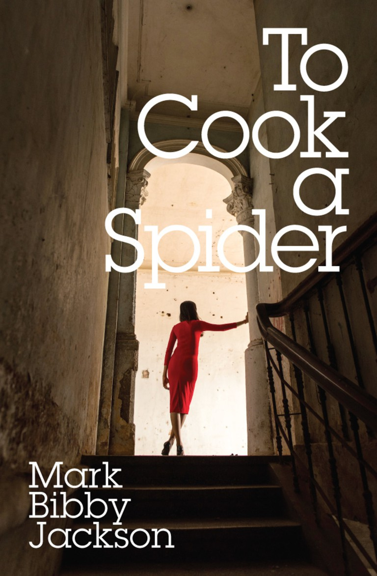 to-cook-a-spider-final-cover-0