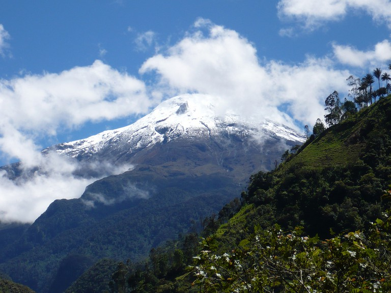 From mountains to rainforests, Colombia is rich in biodiversity