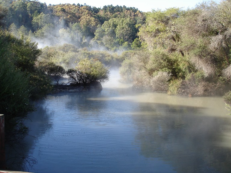 Whakarewarewa Forest and hot springs