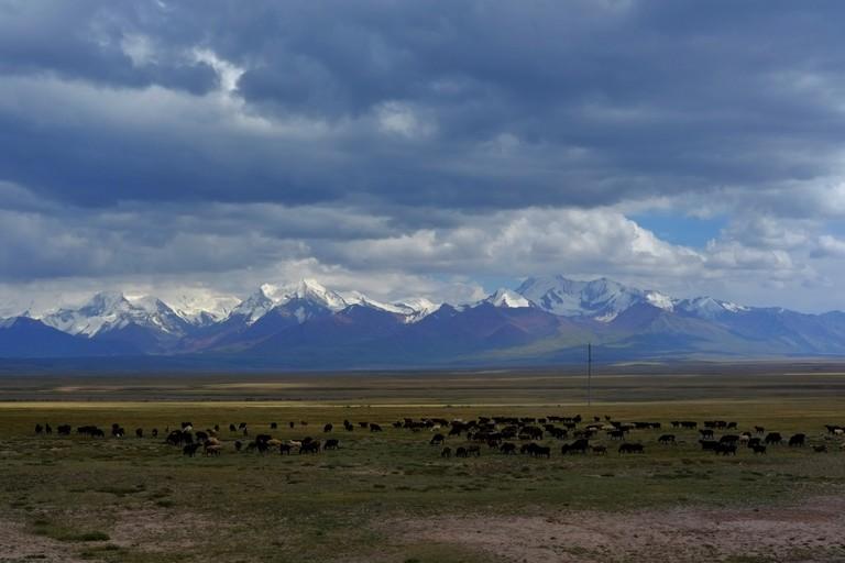 Looking onto the Pamirs, Kyrgyzstan I © Fergus Brooks