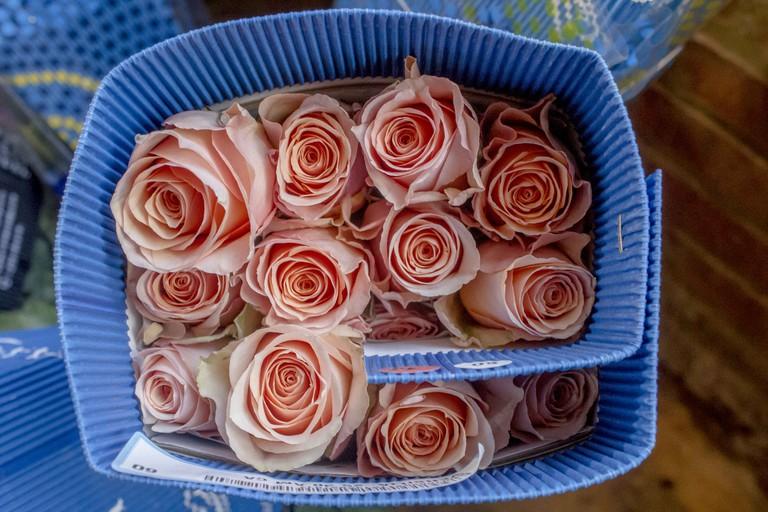 Gramercy Flowers VDAY 031