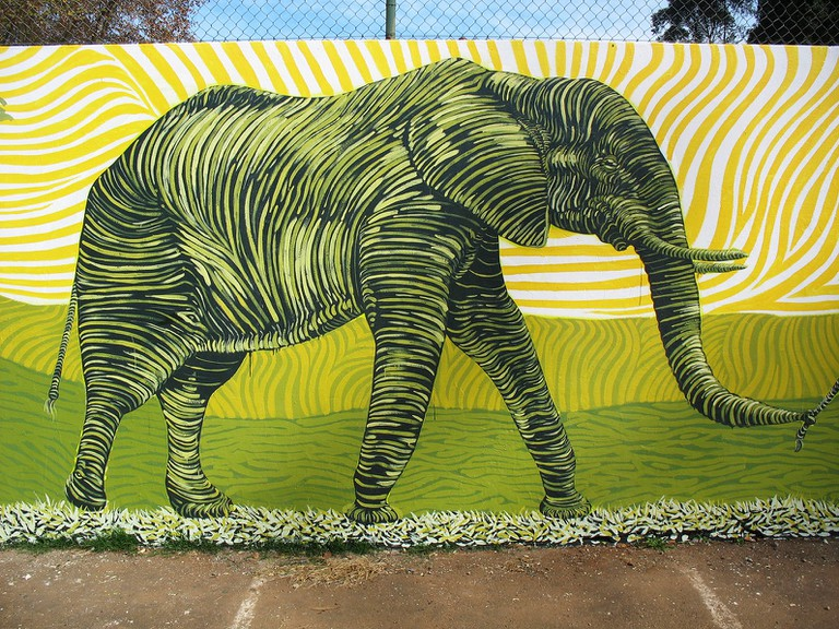Elephant mural adorning a street in Durban by Mook Lion
