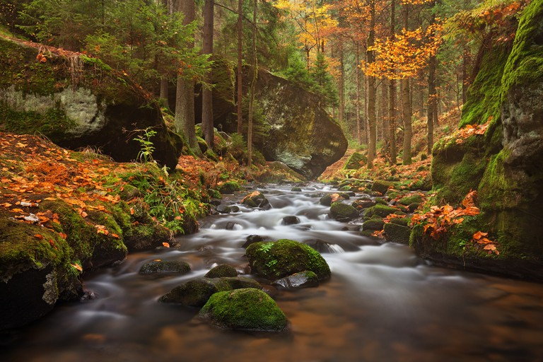 Bohemian Switzerland is particularly magical in the autumn
