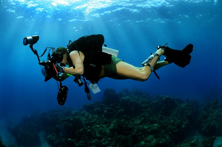 Scuba diver filming │© skeeze / Pixabay