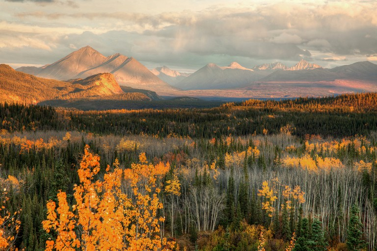 The park's Alaska Range mountains include the awesome Denali