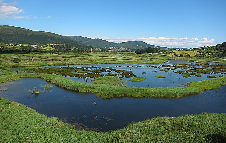 Urdaibai Biosphere Reserve, Spain | UrdaibaiBirdCenter / Wikimedia Commons