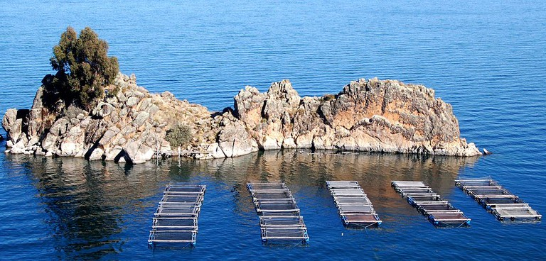 Fish farm on Lake Titicaca
