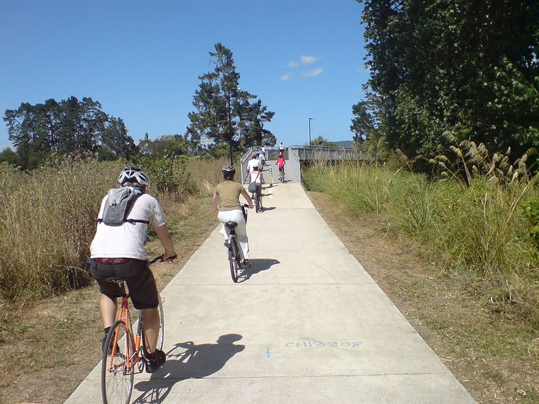 Cyclists on Twin Stream Pathway in Auckland