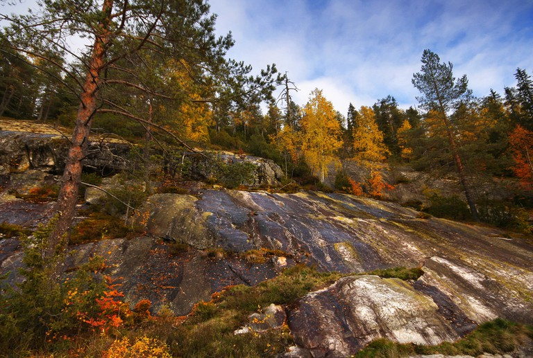 The terrain of Koli National Park